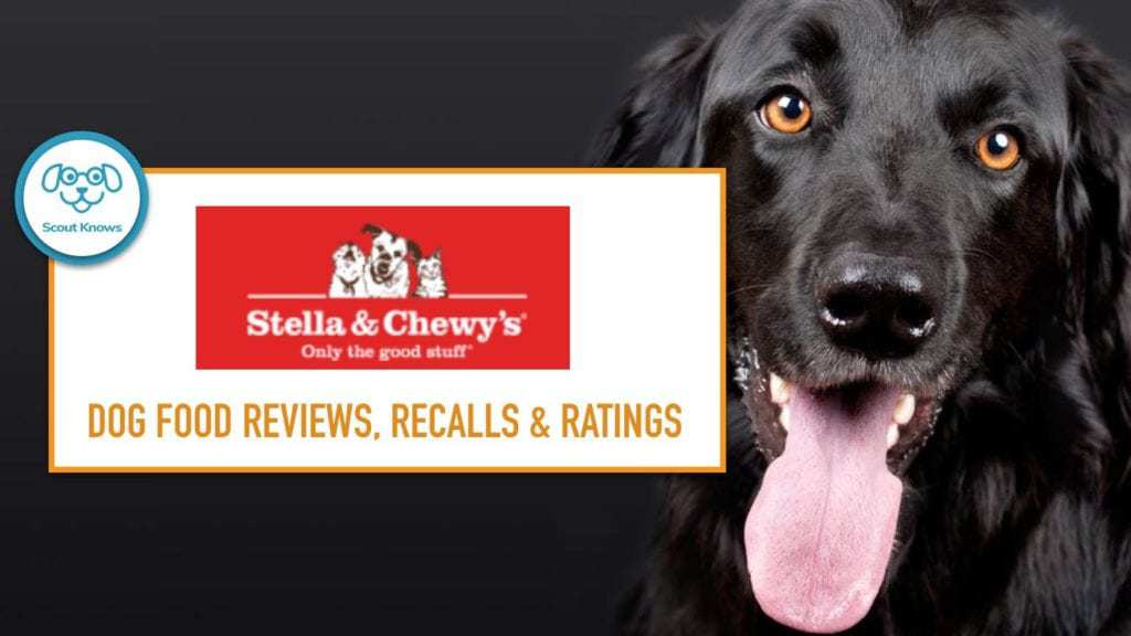 Stella & Chewy's Review