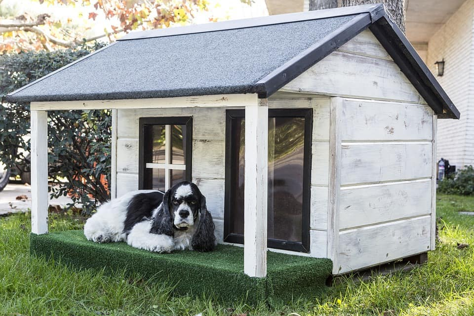 Best Outdoor Dog Houses (Note: Will Link To Articles 'Best Insulated And Heated Dog Houses', And 'The 8 Best Dog Houses For Sale On Amazon', & 'Buying A Dog House: Complete Buyer'S Guide'